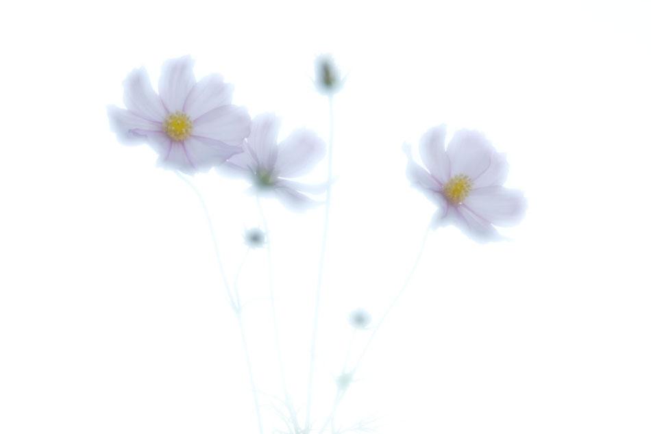141008_2