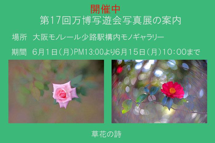 17_20200613063301